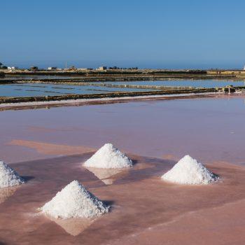 La raccolta del sale