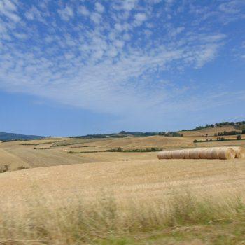 Passando tra le colline di Cecina