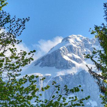 Un fantastico scorcio di montagna.