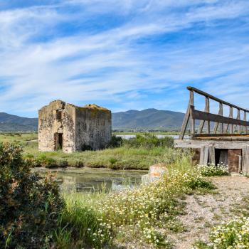 Zona lacustre area dell'area protetta Daccia Botrona