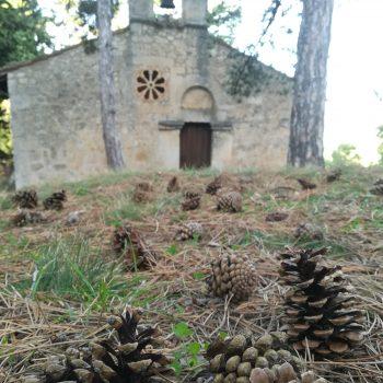 Oratorio di San Pellegrino con pigne